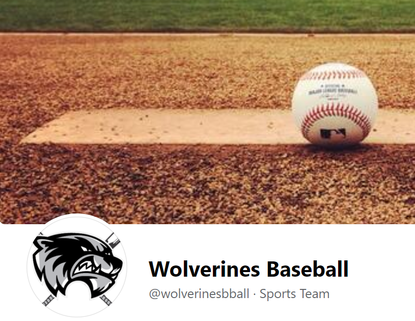Wolverines Team Page Image